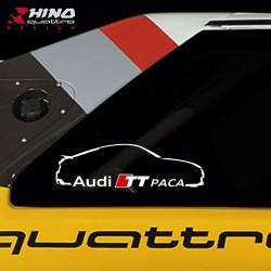 Audi-TT-PACA-MK3-R