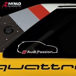 Stickers kit RS3 8V Audi...