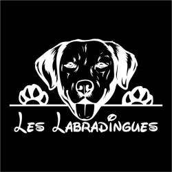 Les_Labradingues_sticker_blanc