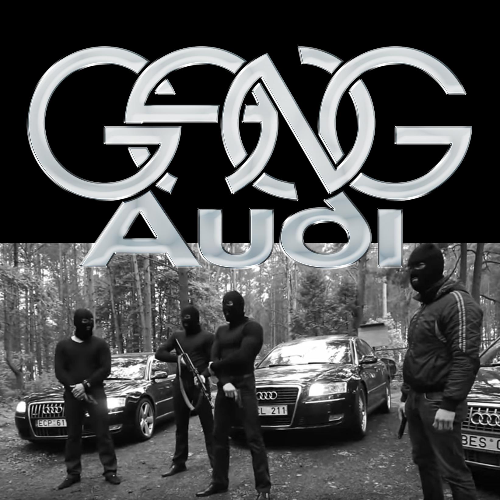 BANIERE_GANG-Audi.jpg